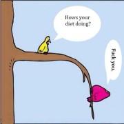Striptekening dieten